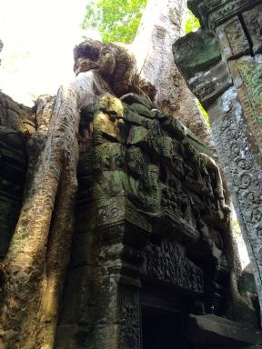 Draping down the pillar
