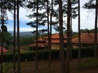 The monastery grounds