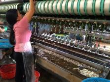 Threading and maintaining the silk machine