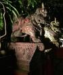 Ferocious beasts guarding the restaurant