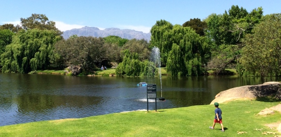 Spier Winery grounds