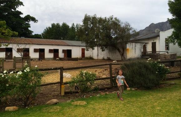 The winery's farm