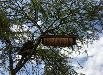 Traditional bee hive outside the park gate
