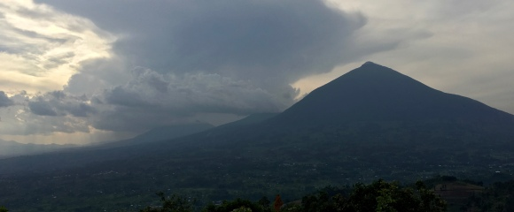 The Virunga volcanoes
