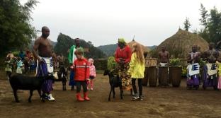 Donating goats